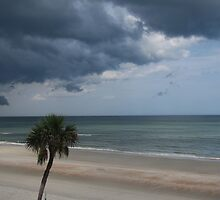 Approaching Storm by caybeach