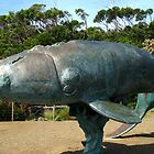 Sculpture of a Southern Right Whale by Marilyn Harris