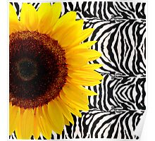 Bright Yellow Sunflower on Zebra Print Stripes Poster