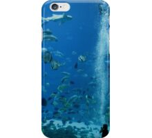 Window to a New World iPhone Case/Skin