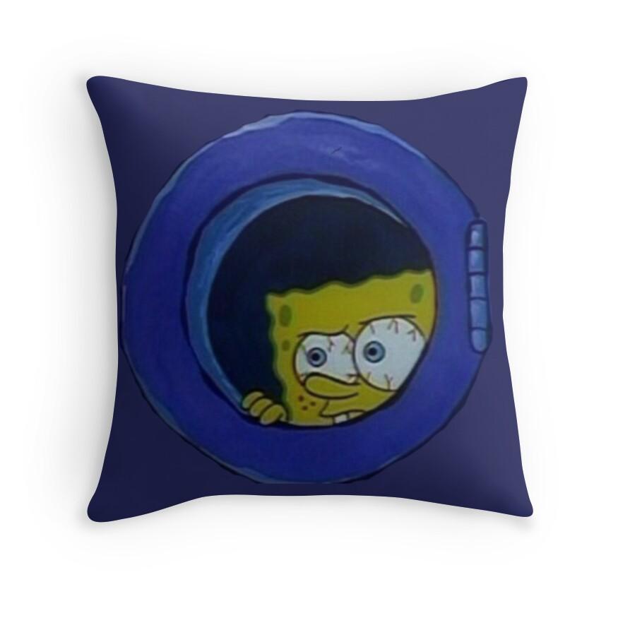 Design Sponge Throw Pillows :