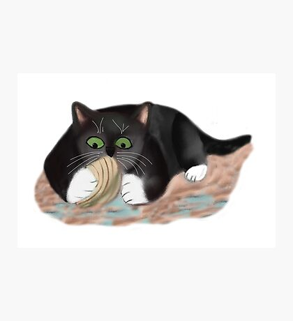 Unhappy Clam at High Tide Clasped by Kitten Photographic Print