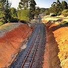 Disused Railway, Bridgetown, Western Australia by Elaine Teague