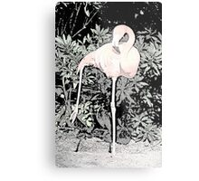 Yoga Flamingo Metal Print