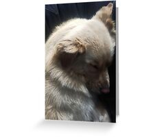 Tranquil Slumber Greeting Card