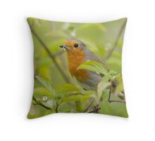 Robin with Mayfly Throw Pillow
