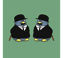 Thomson and Thompson Penguins Photographic Print
