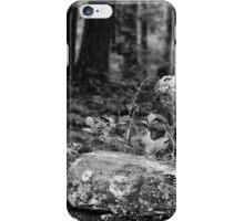 Restful iPhone Case/Skin