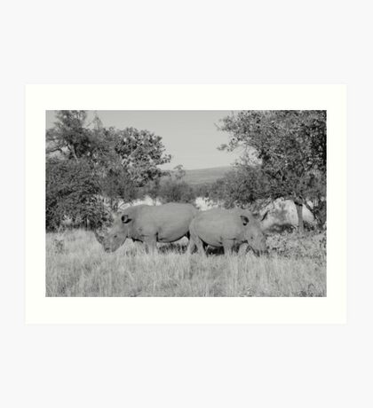 Safari - Rhino Family Art Print