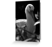 Elegant.. Greeting Card