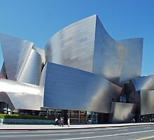 Walt Disney Concert Hall by Curley