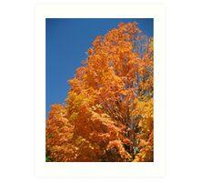 Orange Leaves Art Print