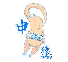 The Year of the Monkey by Indigo East