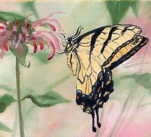 Butterfly on Pink Flowers by artbysas