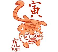 The Year of the Tiger by Indigo East