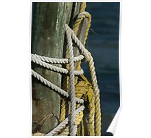 Rope on piling Poster