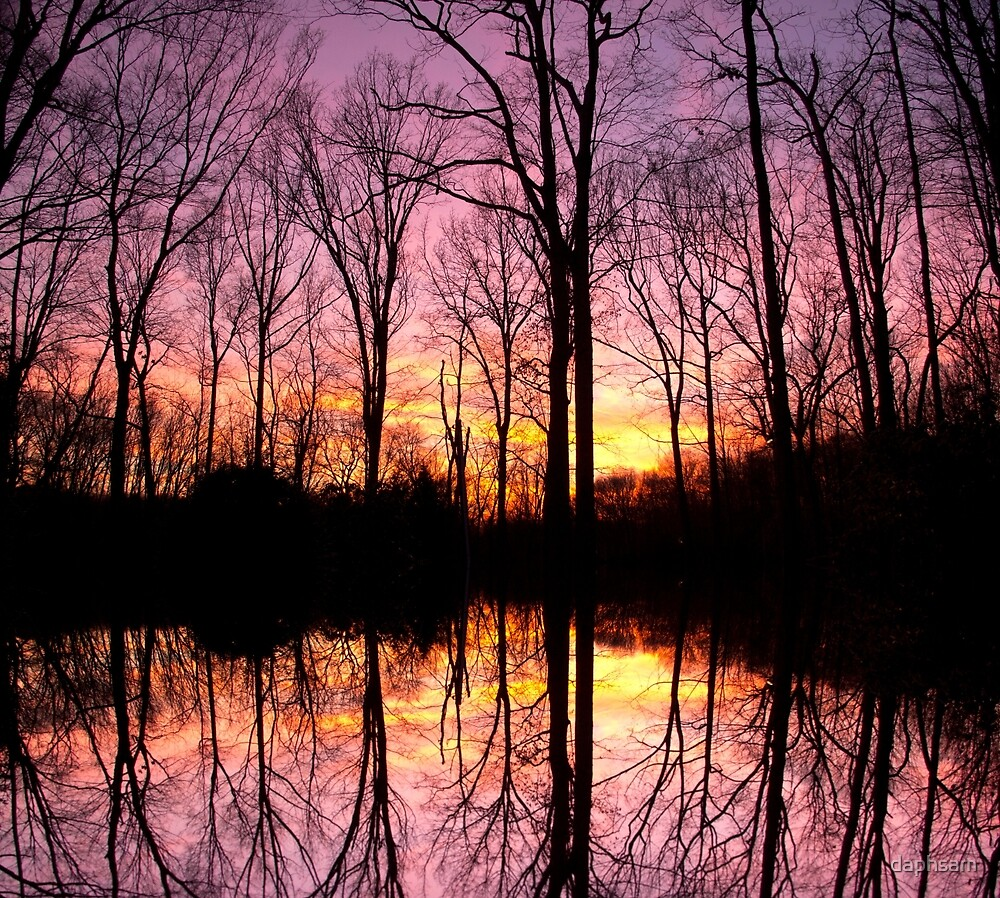 Reflections Of Where I Begin by daphsam