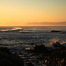 Golden Sunset by Susan van Zyl