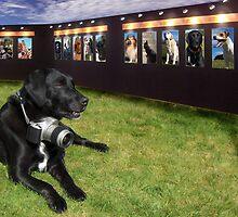 Dog Image by Bill Crookston