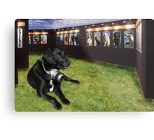 Dog Image Metal Print