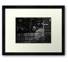 UN Plaza Watch Framed Print