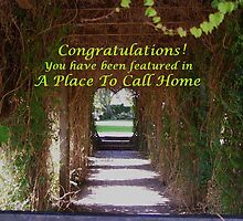 Congratulations A Place To Call Home by Linda Scott
