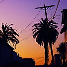 Echo Park LA Sunset by Curley