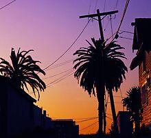Echo Park LA Sunset by Curley