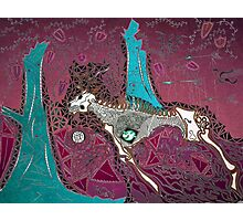 The Pink & Teal Hunt Photographic Print