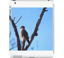Brooklyn Falcon  iPad Case/Skin