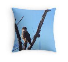 Brooklyn Falcon  Throw Pillow