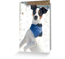 Spotty Greeting Card
