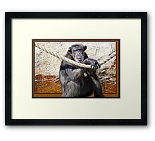 So, ya wanna party? Framed Print