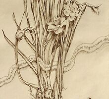 Narcissus and Echo - Walnut Ink by Alice McMahon