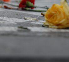 John Lennon Memorial by Hayley Wright