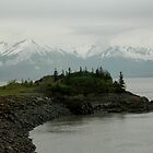 Alaska Shoreline by Margaret  Shark
