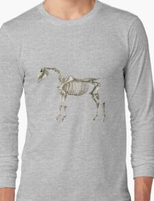 The Skeleton of a Horse. Long Sleeve T-Shirt