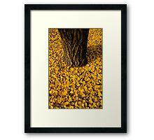 Untitled.00220 Framed Print