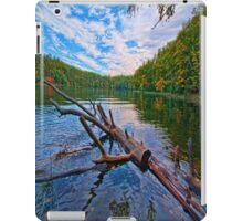 Water Logged iPad Case/Skin