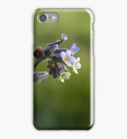 Plant with beautiful flowers iPhone Case/Skin