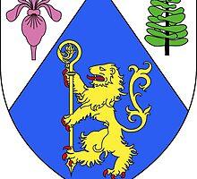 Saint-Jérôme Coat of Arms  by abbeyz71