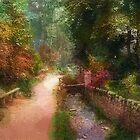 Country Lane by jpgilmore