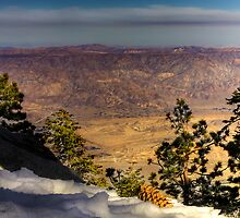 View form Mount San Jacinto by Arek Rainczuk