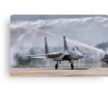 The Last Flight Metal Print