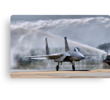 The Last Flight Canvas Print
