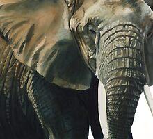 """Elephant"" Wildlife Animal Watercolor by Paul Jackson"