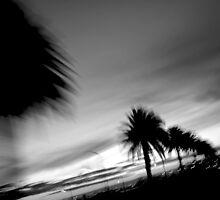 St Kilda by Craig Ollis
