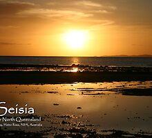 Seisia Postcard by Heinz