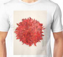 Red. Unisex T-Shirt