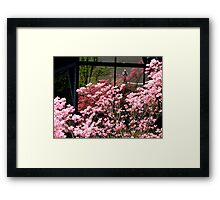 Reflections of an Artist and His Art Framed Print